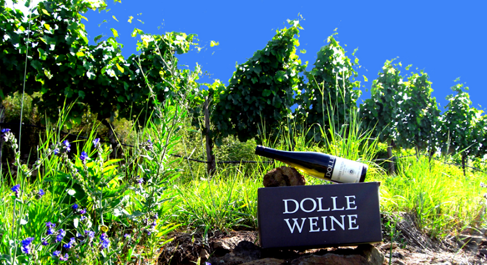 Weingut Peter Dolle