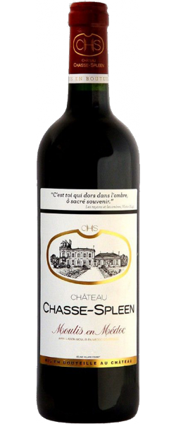 Chateau Chasse Spleen - Moulis Crus Grand Bourgois Ex, 2010