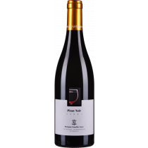 Leopold Auer - Pinot Noir Reserve bio